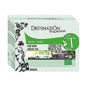 Thé Vert Sencha Matcha - Japon 20 unités de 2g
