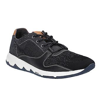 Hush Puppies Mens veld brei Lace Up Trainer