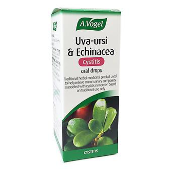A. Vogel Uva-ursi & Echinacea oral drops (before called Uva-ursi complex) 50ml