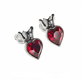 Alchemy - claddagh heart - stud earrings