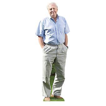 Sir David Attenborough Celebrity Mini Cardboard Cutout / Standup / Standee