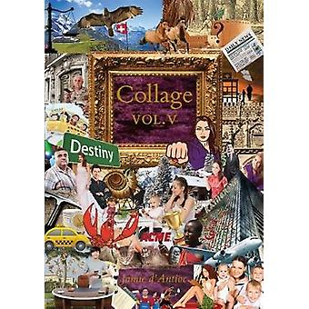 Collage - Volume 5 by Jamie D'Antioc - 9781941634028 Book