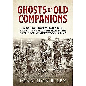 Spoken van oude metgezellen: het Welsh leger van Lloyd George, de Reichsheer van Kaiser en de slag voor Mametz hout, 1914-1916