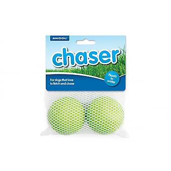 Ancol Floating Balls (2 Pack)