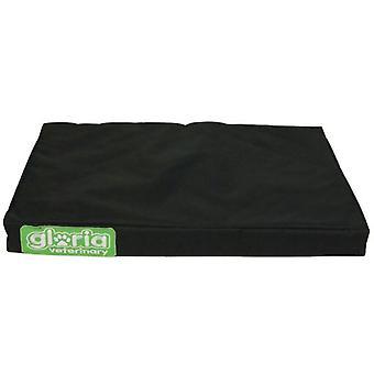 Gloria Pets Therapeutic beds With Foam Vicoelástica (Honden , Comfort , Bedden)