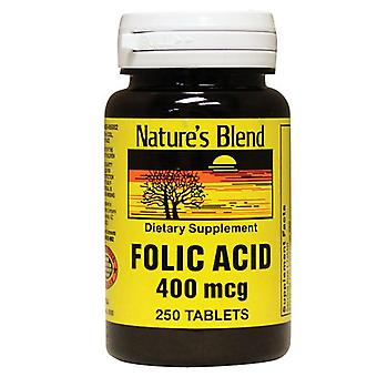 Nature's blend folic acid, 400 mcg, tablets, 250 ea