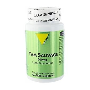 Wild Yam 500 mg Extract 30 capsules of 500mg