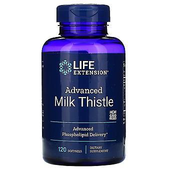 Life Extension, Advanced Milk Distel, 120 Softgels