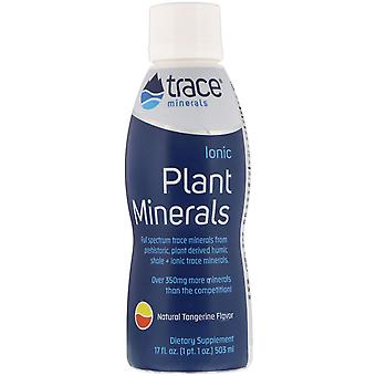 Trace Minerals Research, Ionic Plant Minerals, Natural Tangerine Flavor, 17 fl o