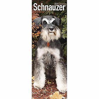 Otter House Schnauzer Slim Kalender 2022