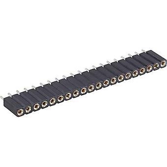 BKL Electronic Receptacles (precision) No. of rows: 1 Pins per row: 36 10120803 1 pc(s)
