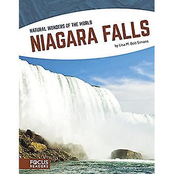 Niagara Falls door Lisa M Bolt Simons - 9781635175165 boek