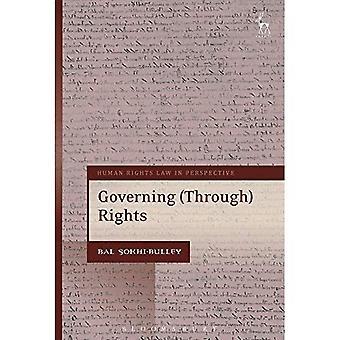 Styr genom rättigheter (mänskliga rättigheter lag perspektiv)