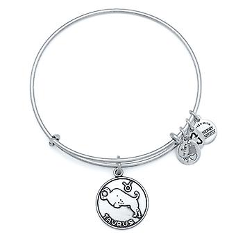 Alex and Ani Taurus Silver Bangle A13EB01TARS