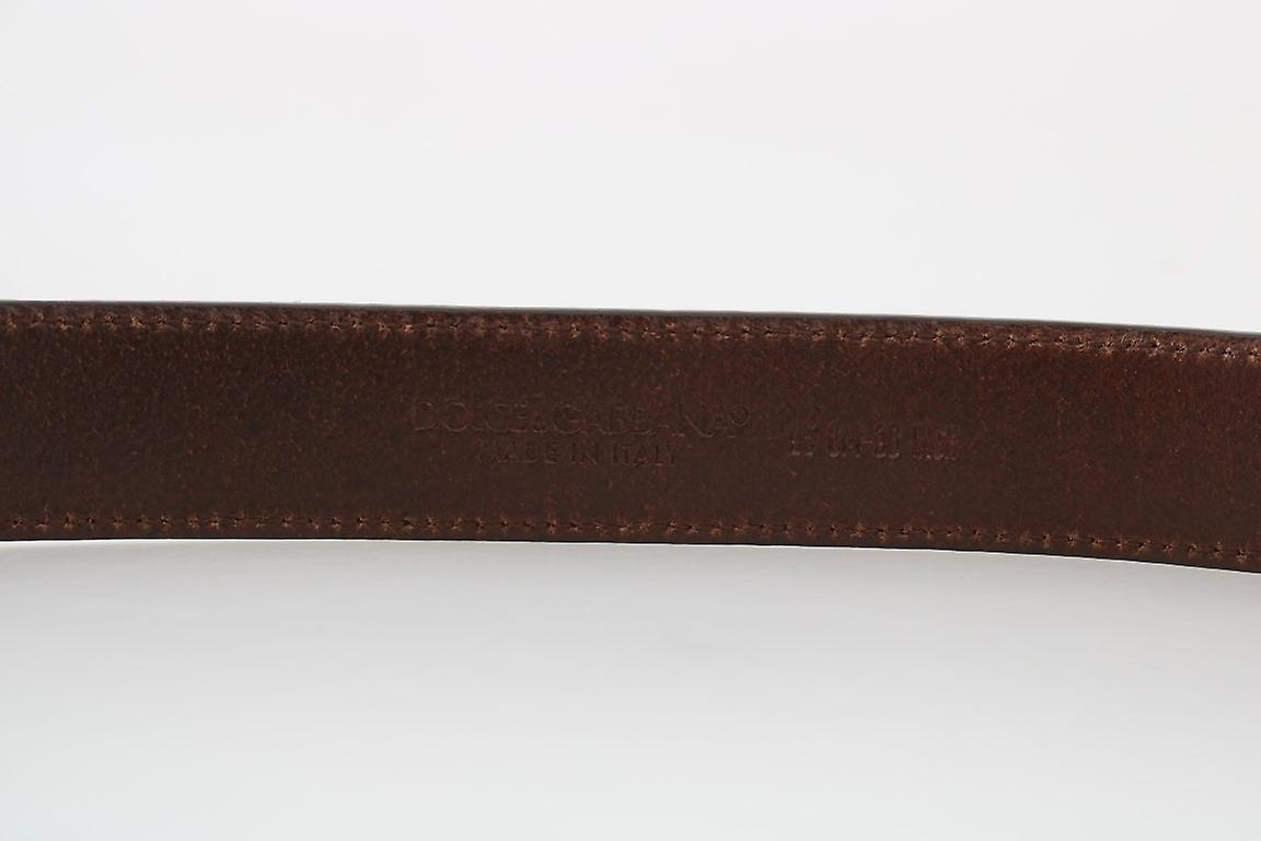 Dolce & Gabbana Brown Leather Gray Brushed Buckle 2.5 cm Belt