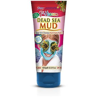 Montagne Jeunesse Dead Sea Mud Tubo 100 ml
