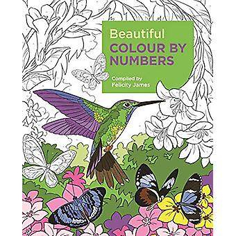 Beautiful Colour by Numbers by Felicity James - 9781788887687 Book
