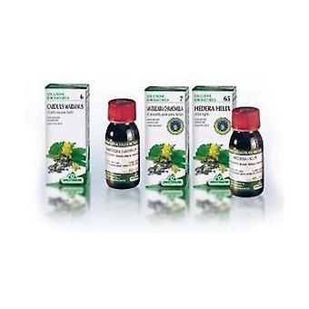 Motherwort TM 16 50 ml