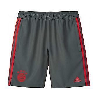 2018-2019 Bayern Munich Adidas Woven Shorts (Utility Ivy)