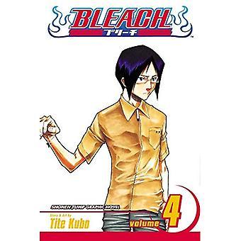 Bleach: v. 4