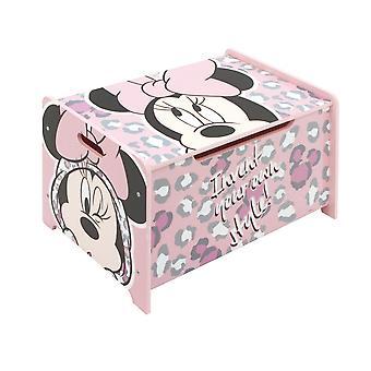 Caixa de madeira do estilo de Minnie da caixa