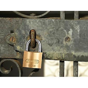 ABUS 55/40mm Brass Padlock Quad Pack ABU5540QPK