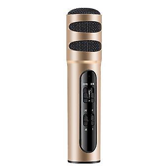 Musiikkimikrofoni kannettava kädessä pidettävä karaokemikrokoitin joulusynttäreille kotibileisiin kultainen