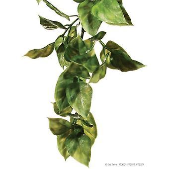 Exo Terra EXO TERRA PLASTIC PLANT AMAPALLO - MEDIUM