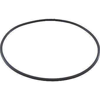 Pentair PacFab 071427 3 Port Valve O-Ring