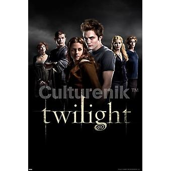 Twilight groupe affiche Poster Print