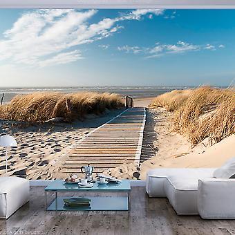 Fototapete - Langeoog - Strand an der Nordsee