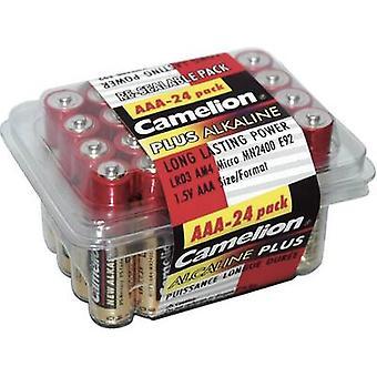 AAA battery Alkali-manganese Camelion Plus LR03 1250 mAh 1.5 V 24 pc(s)