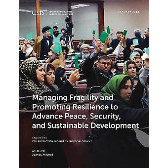 Managing Fragility and Promoting Resilience to Advance Peace - Securi