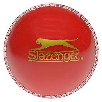 Slazenger sport aktivitet cricket Ball unge barn