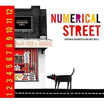 Numerieke Street