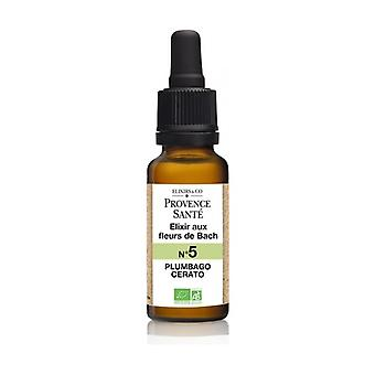 ORGANIC Plumpago 20 ml of floral elixir