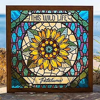 This Wild Life - Petaluma (Trans Pale Blue) [Vinyl] USA import