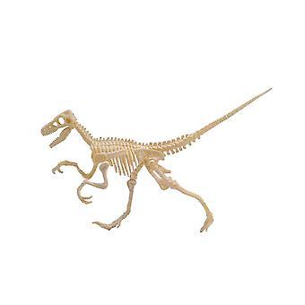 DIY Dinosaur Excavation Kit, Dig Up Dinosaurs Bones, Great Educational Gifts, Science Toys for Kids,