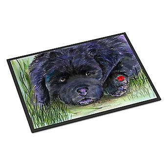 Carolines Treasures  SS8272MAT Newfoundland Indoor Outdoor Mat 18x27 Doormat