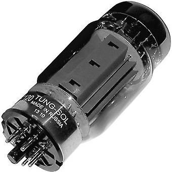 KT 120 Vakuumrohr Pentode 400 V 135 mA Anzahl der Stifte: 8 Basis: Oktalgehalt 1 Stk.