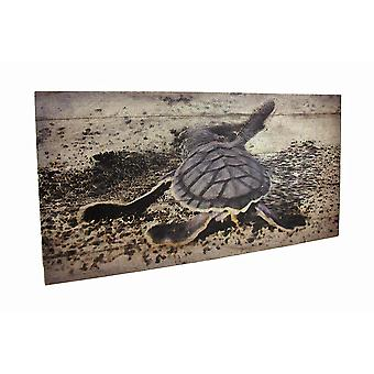 Baby Sea Turtle Printed Canvas Wall Hanging