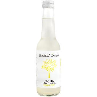 Breckland Orchard Cloudy Lemonade Posh Pop