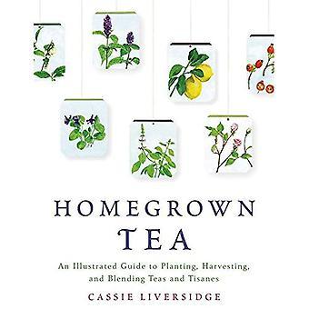 Hausgemachten Tee