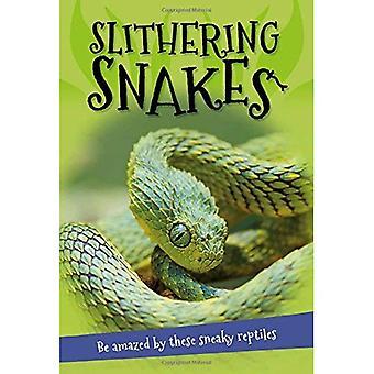 It's All About... Glijden slangen: Alles wat u wilt weten over slangen in een verbazend boek (It's All about)