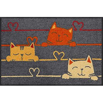 Salon lion foot mat of 50 x 75 cm cat lines washable dirt mat