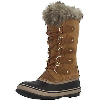 Sorel laarzen Joan van Arctische kleur 224