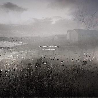 Joshua Trinidad - In November [CD] USA import