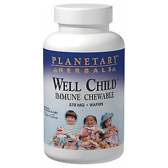Planetary Herbals Well Child Immune Chewable wafer, 30 Wafers