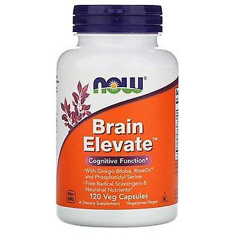 Now Foods, Brain Elevate, 120 Veg Capsules