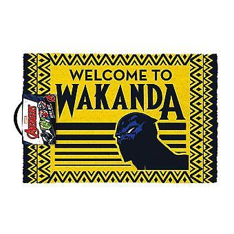 Musta pantteri tervetuloa Wakandan ovimatille